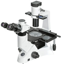 accu-scope microscope model 3031